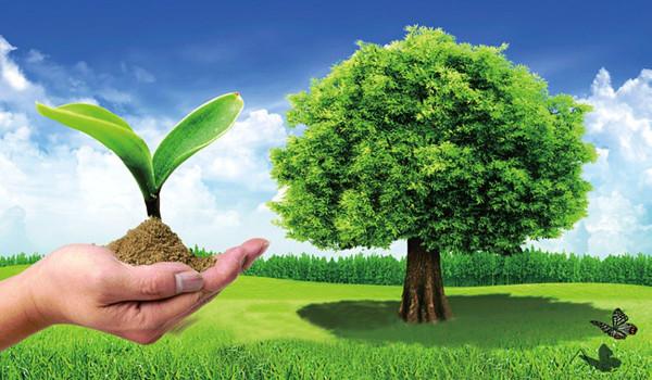موضوع تعبير عن البيئة والمحافظة عليها موقع الخليج